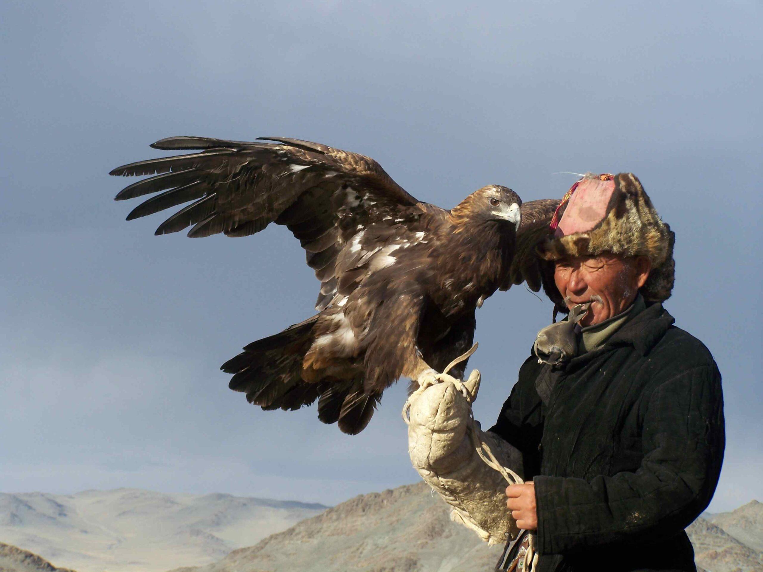 kasachischer Adlerjäger Mongolei